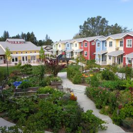 Petaluma ave homes cohousing Vzeleni