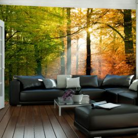 Bimago Fototapeta - Beautiful autumn 200x154 cm GLIX DECO s.r.o.