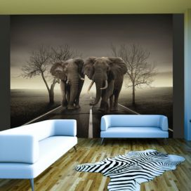 Bimago Fototapeta - City of elephants 350x270 cm GLIX DECO s.r.o.