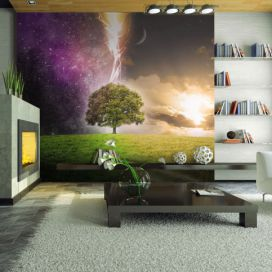Bimago Fototapeta - Magic tree 350x270 cm GLIX DECO s.r.o.