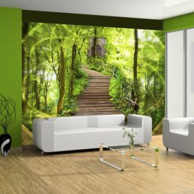 Bimago Fototapeta - Mystery of the forest 350x270 cm GLIX DECO s.r.o.