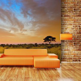 Bimago Fototapeta - South African sunset 200x154 cm GLIX DECO s.r.o.