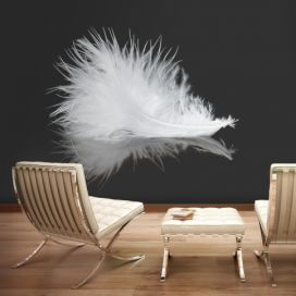 Bimago Fototapeta - White feather 200x154 cm GLIX DECO s.r.o.