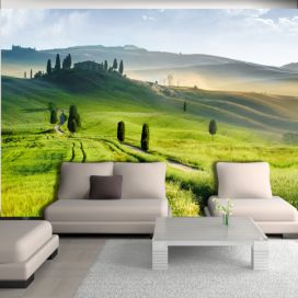 Bimago Fototapeta - Morning in the countryside 200x140 cm GLIX DECO s.r.o.