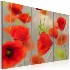 Obraz na plátně Bimago - In the thicket of poppies - triptych 60x40 cm GLIX DECO s.r.o.