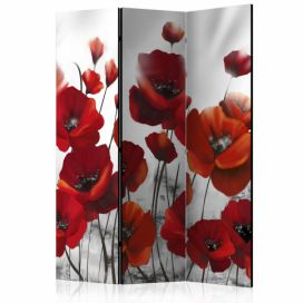 Paraván - Poppies in the Moonlight [Room Dividers] - 135x172 4wall.cz