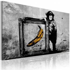 Obraz - Inspired by Banksy - black and white - 60x40 4wall.cz