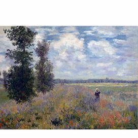Obraz Claude Monet - Poppy Fields near Argenteuil, 40x30 cm Bonami.cz