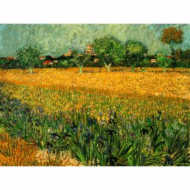 Obraz Vincenta van Gogha - View of arles with irises in the foreground, 40x30 cm Bonami.cz