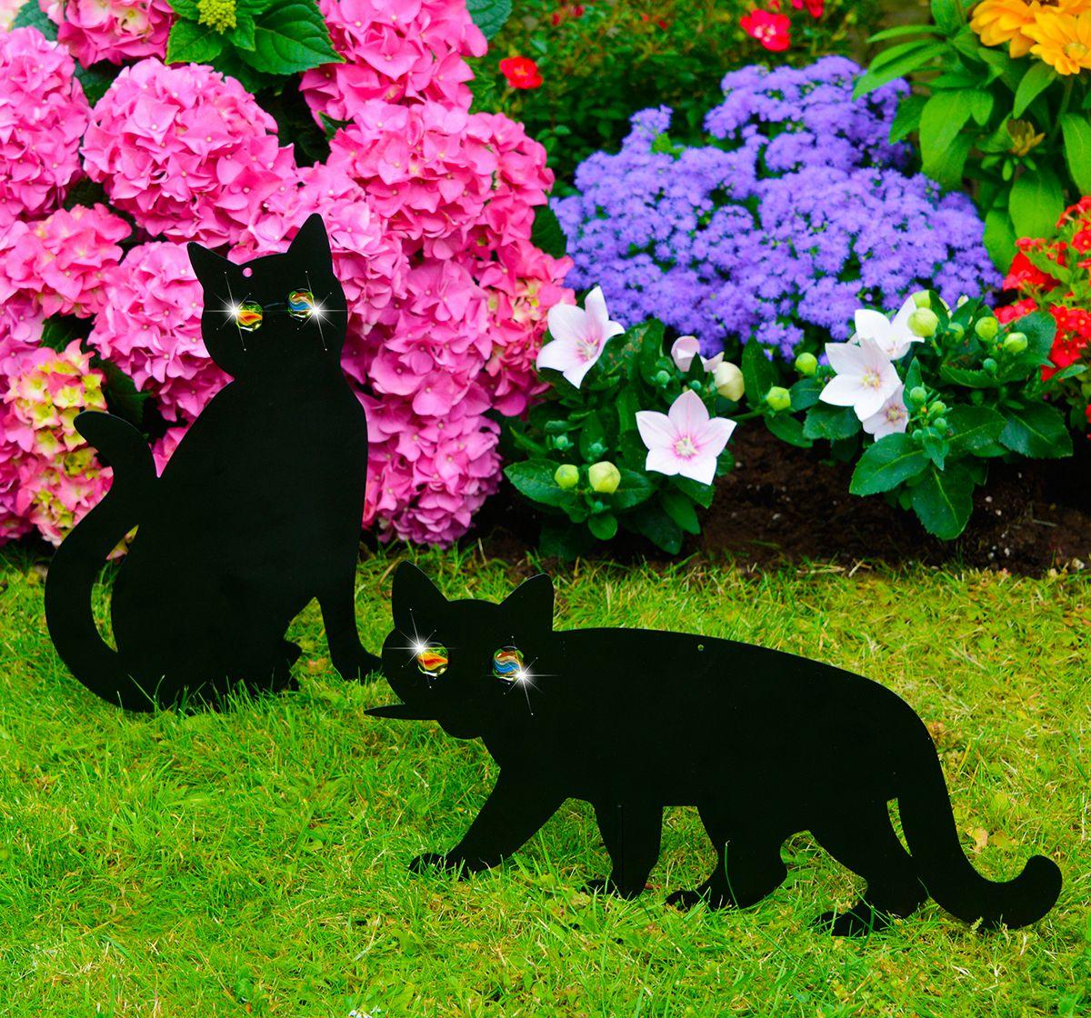 bílá kočička a černé ptáky MILF sex se pohybuje