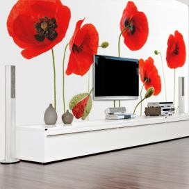 Bimago Fototapeta - Red poppies, summertime reminiscence 250x193 cm