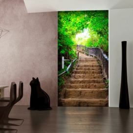 Fototapeta na dveře - Photo wallpaper – Stairs from nature I - 80x210