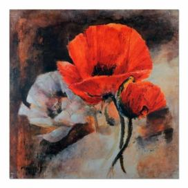 Obraz CARO - Poppies - Still Life 30x30 cm